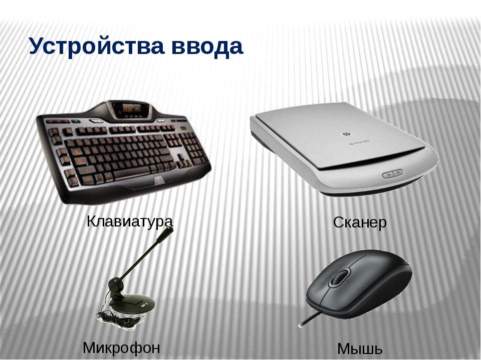 Устройства ввода Клавиатура Сканер Микрофон Мышь