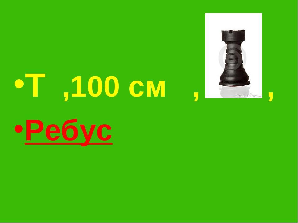 Т ,100 см , , Ребус