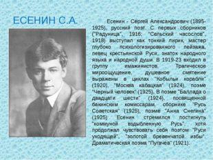 ЕСЕНИН С.А. Есенин - Сергей Александрович (1895-1925), русский поэт. С первых