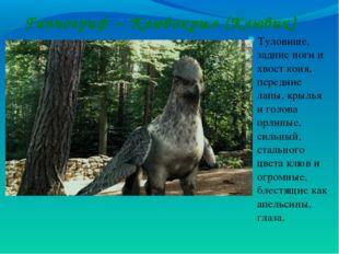 Гиппогриф – Клювокрыл (Клювик) Туловище, задние ноги и хвост коня, передние л