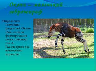 Окапи – маленький зеброжираф Определите генотипы родителей Окапи (Аа), если з