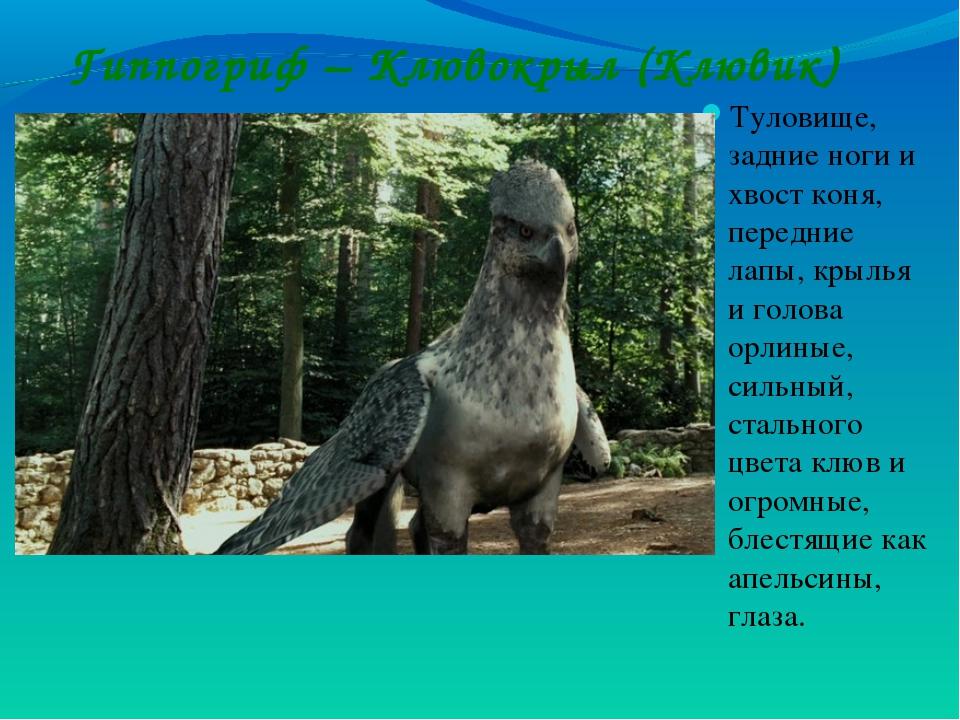 Гиппогриф – Клювокрыл (Клювик) Туловище, задние ноги и хвост коня, передние л...