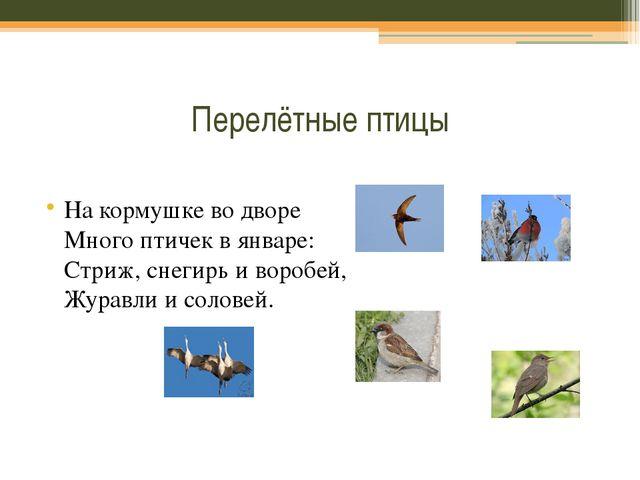 Перелётные птицы На кормушке во дворе Много птичек в январе: Стриж, снегирь...