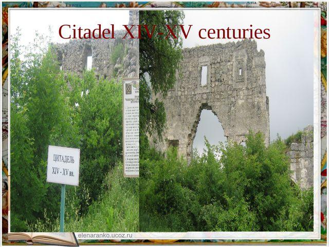 Citadel XIV-XV centuries