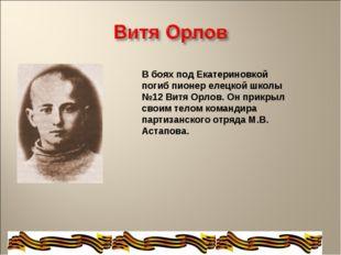 В боях под Екатериновкой погиб пионер елецкой школы №12 Витя Орлов. Он прикры