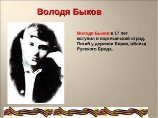 Володя Быков в 17 лет вступил в партизанский отряд. Погиб у деревни Борки, вб