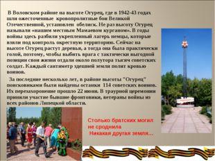 В Воловском районе на высоте Огурец, где в 1942-43 годах шли ожесточенные кр