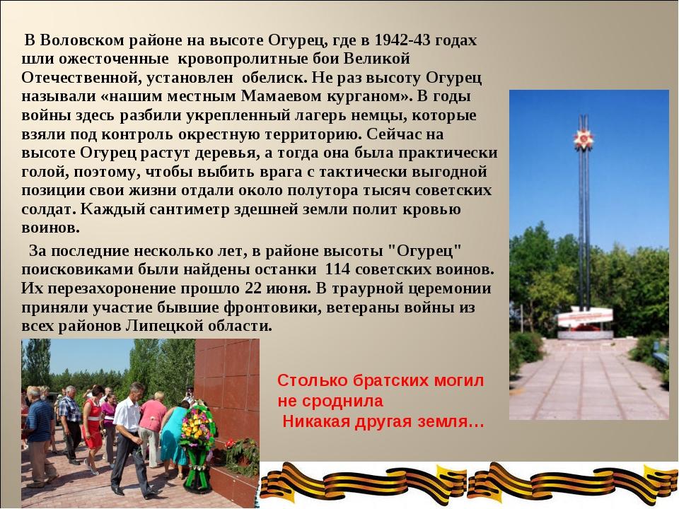 В Воловском районе на высоте Огурец, где в 1942-43 годах шли ожесточенные кр...