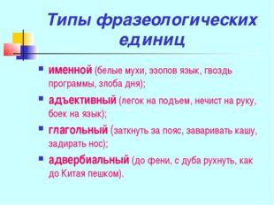 Типы фразеологических единиц именной (белые мухи, эзопов язык, гвоздь програм