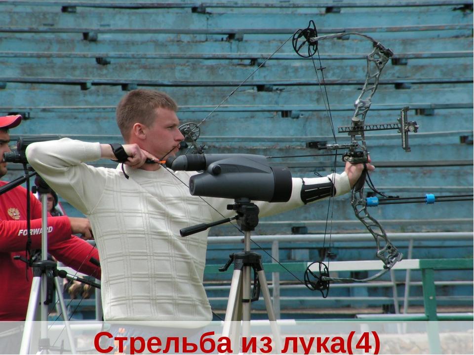Стрельба из лука(4)