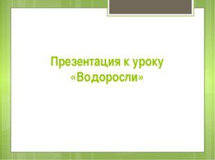 Презентация к уроку «Водоросли»