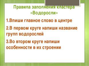 Правила заполнения кластера «Водоросли» 1.Впиши главное слово в центре 2.В п