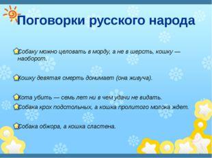 Поговорки русского народа Собаку можно целовать в морду, а не в шерсть, кошку