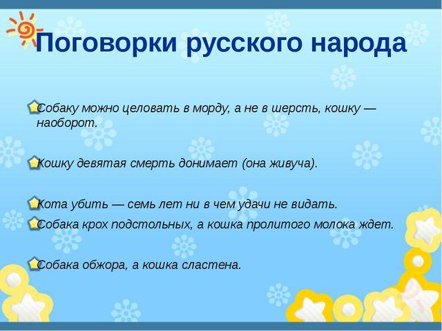 Поговорки русского народа Собаку можно целовать в морду, а не в шерсть, кошку...