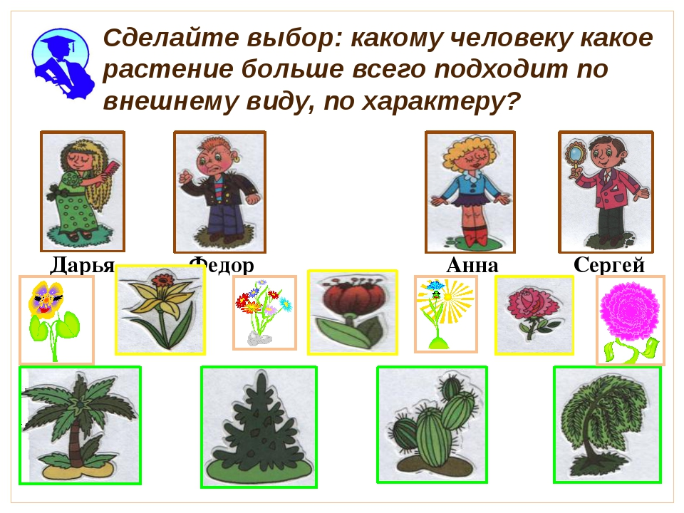 Сделайте выбор: какому человеку какое растение больше всего подходит по внеш...