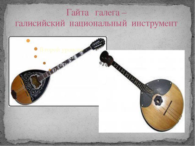 Гайта галега – галисийский национальный инструмент