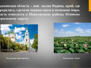Астраханская область – моя малая Родина, край, где мы родились, сделали первы