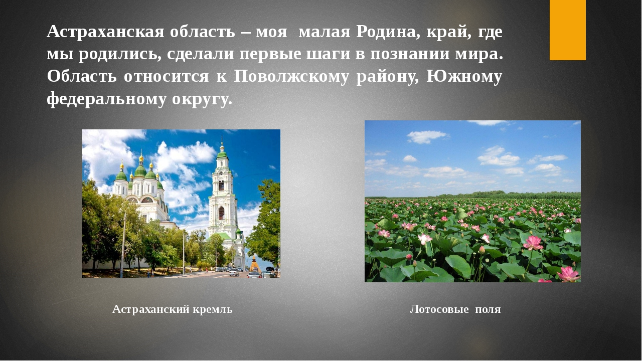 Астраханская область – моя малая Родина, край, где мы родились, сделали первы...