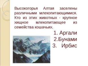 Высокогорья Алтая заселены различными млекопитающимися. Кто из этих