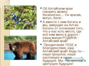 Об Алтайском крае говорить можно бесконечно… Он красив, могуч, богат. А вме