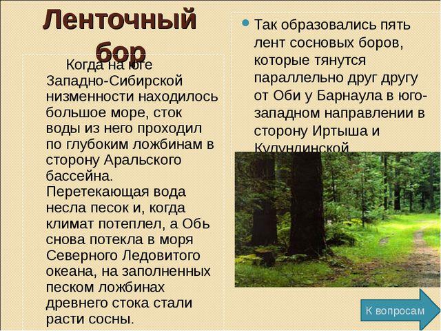 Ленточный бор Когда на юге Западно-Сибирской низменности находилось большое м...