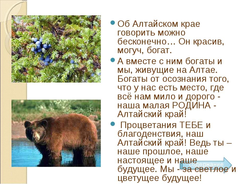 Об Алтайском крае говорить можно бесконечно… Он красив, могуч, богат. А вме...