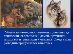Убивая на охоте диких животных, они иногда приносили их детенышей домой. Дет