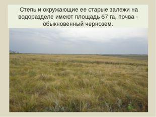 Степь и окружающие ее старые залежи на водоразделе имеют площадь 67 га, почв