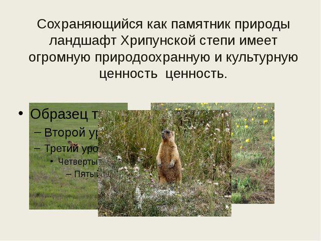 Сохраняющийся как памятник природы ландшафт Хрипунской степи имеет огромную п...