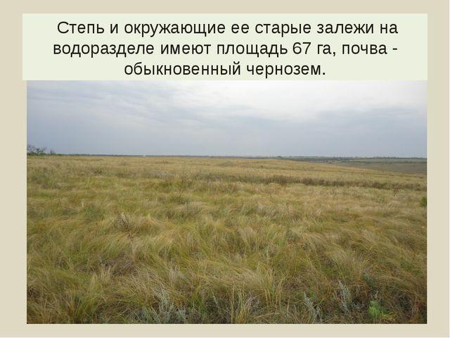 Степь и окружающие ее старые залежи на водоразделе имеют площадь 67 га, почв...