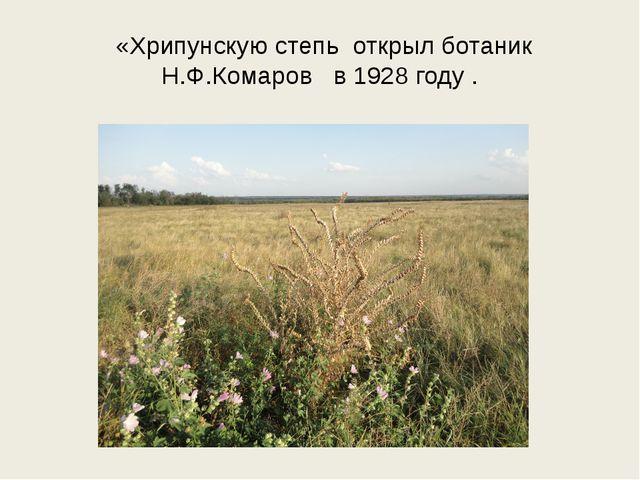 «Хрипунскую степь открыл ботаник Н.Ф.Комаров в 1928 году .
