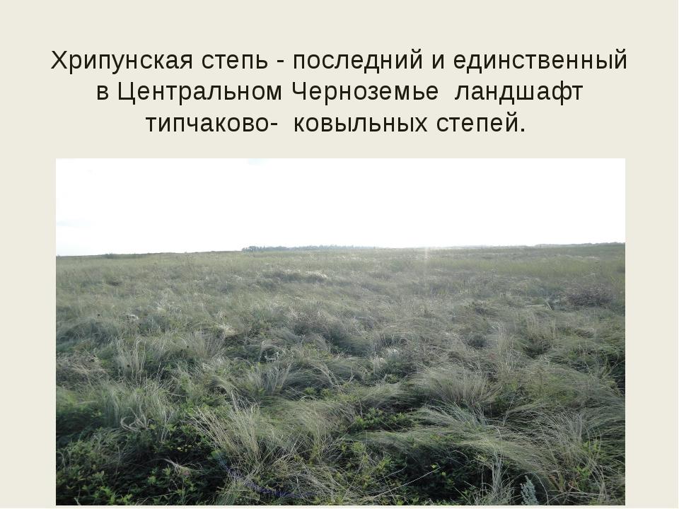 Хрипунская степь - последний и единственный в Центральном Черноземье ландшафт...