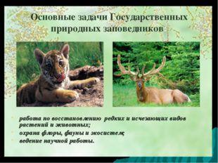 Основные задачи Государственных природных заповедников: работа по восстановле