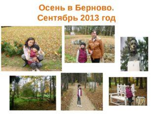 Осень в Берново. Сентябрь 2013 год