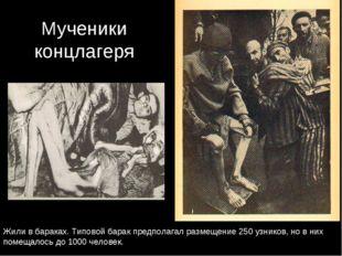 Мученики концлагеря Жили в бараках. Типовой барак предполагал размещение 250
