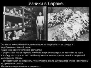 Узники в бараке. Организм заключённых систематически истощался из – за голода