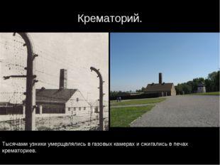 Крематорий. Тысячами узники умерщвлялись в газовых камерах и сжигались в печа