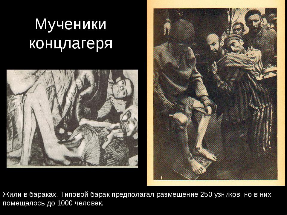 Мученики концлагеря Жили в бараках. Типовой барак предполагал размещение 250...
