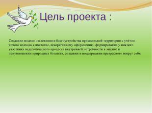 Цель проекта : Создание модели озеленения и благоустройства пришкольной терри