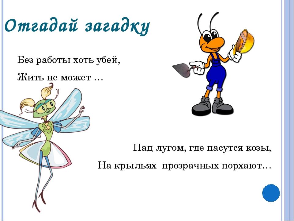 Отгадай загадку Без работы хоть убей, Жить не может … Над лугом, где пасутся...