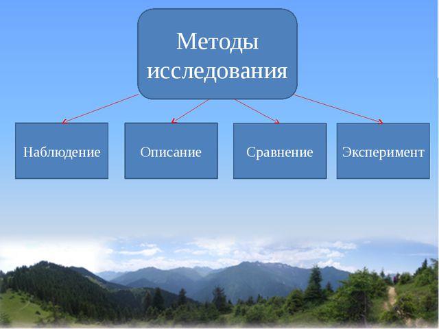 Методы исследования Наблюдение Описание Сравнение Эксперимент