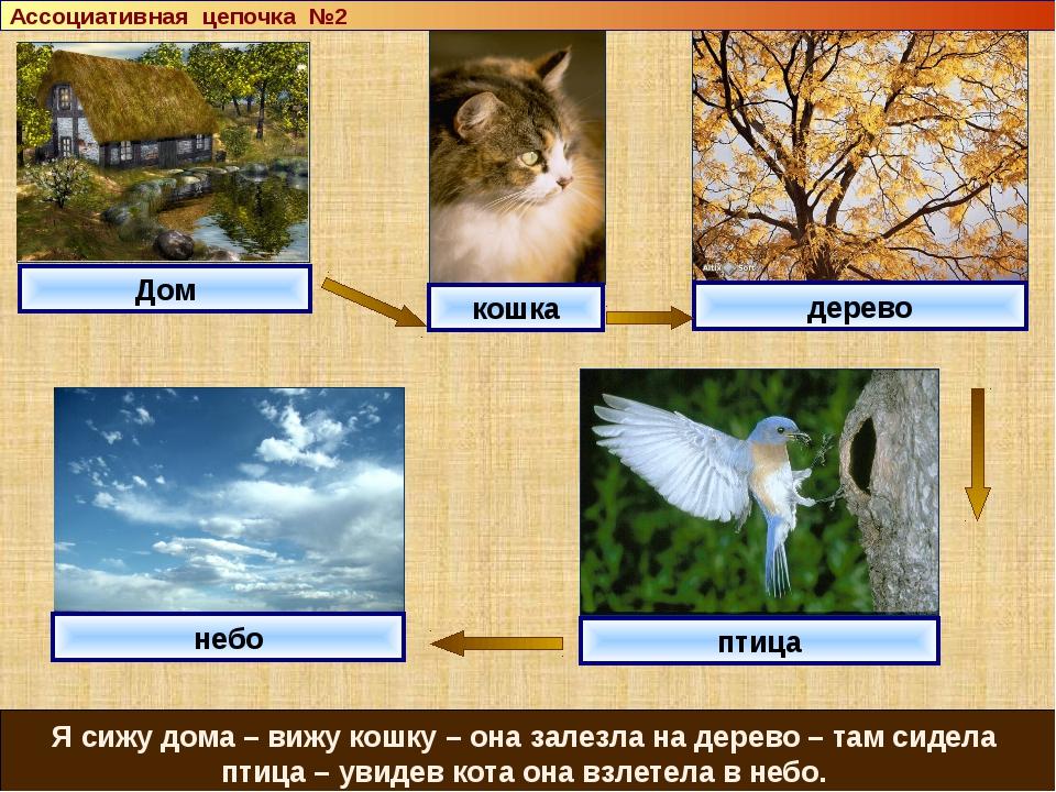 Дом кошка дерево небо Я сижу дома – вижу кошку – она залезла на дерево – там...