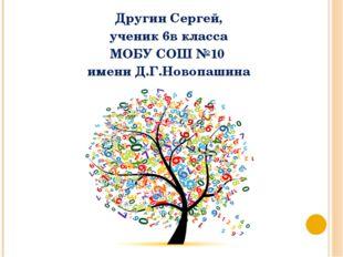 Другин Сергей, ученик 6в класса МОБУ СОШ №10 имени Д.Г.Новопашина