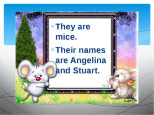 They are mice. Their names are Angelina and Stuart.
