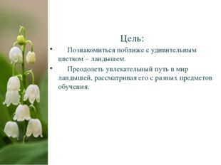Цель: Познакомиться поближе с удивительным цветком – ландышем. Преодолеть увл