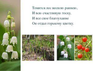 Томится лес весною раннею, И всю счастливую тоску, И все свое благоухание Он