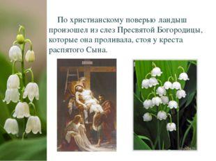 По христианскому поверью ландыш произошел из слез Пресвятой Богородицы, кото