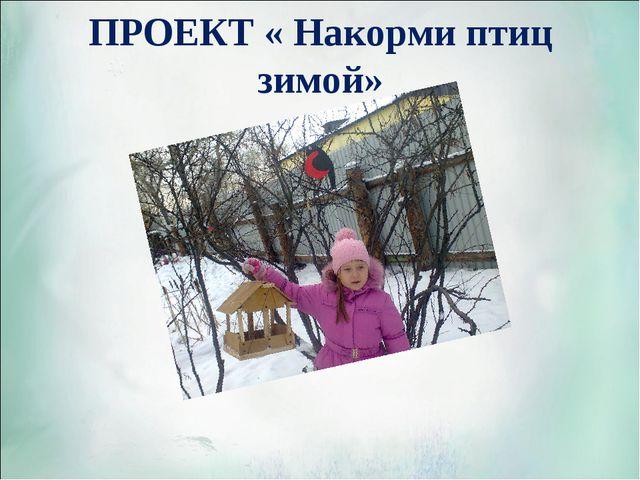 ПРОЕКТ « Накорми птиц зимой»