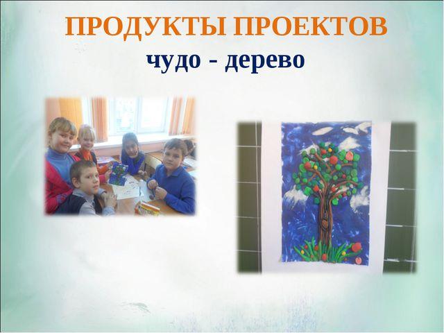 ПРОДУКТЫ ПРОЕКТОВ чудо - дерево