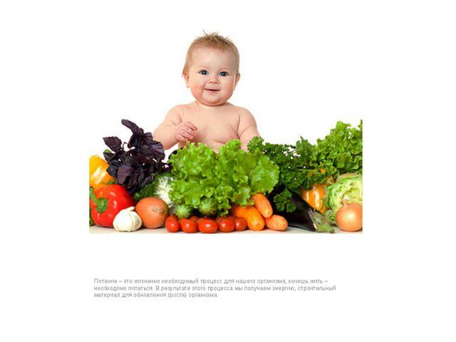 Питание – это жизненно необходимый процесс для нашего организма, хочешь жить...